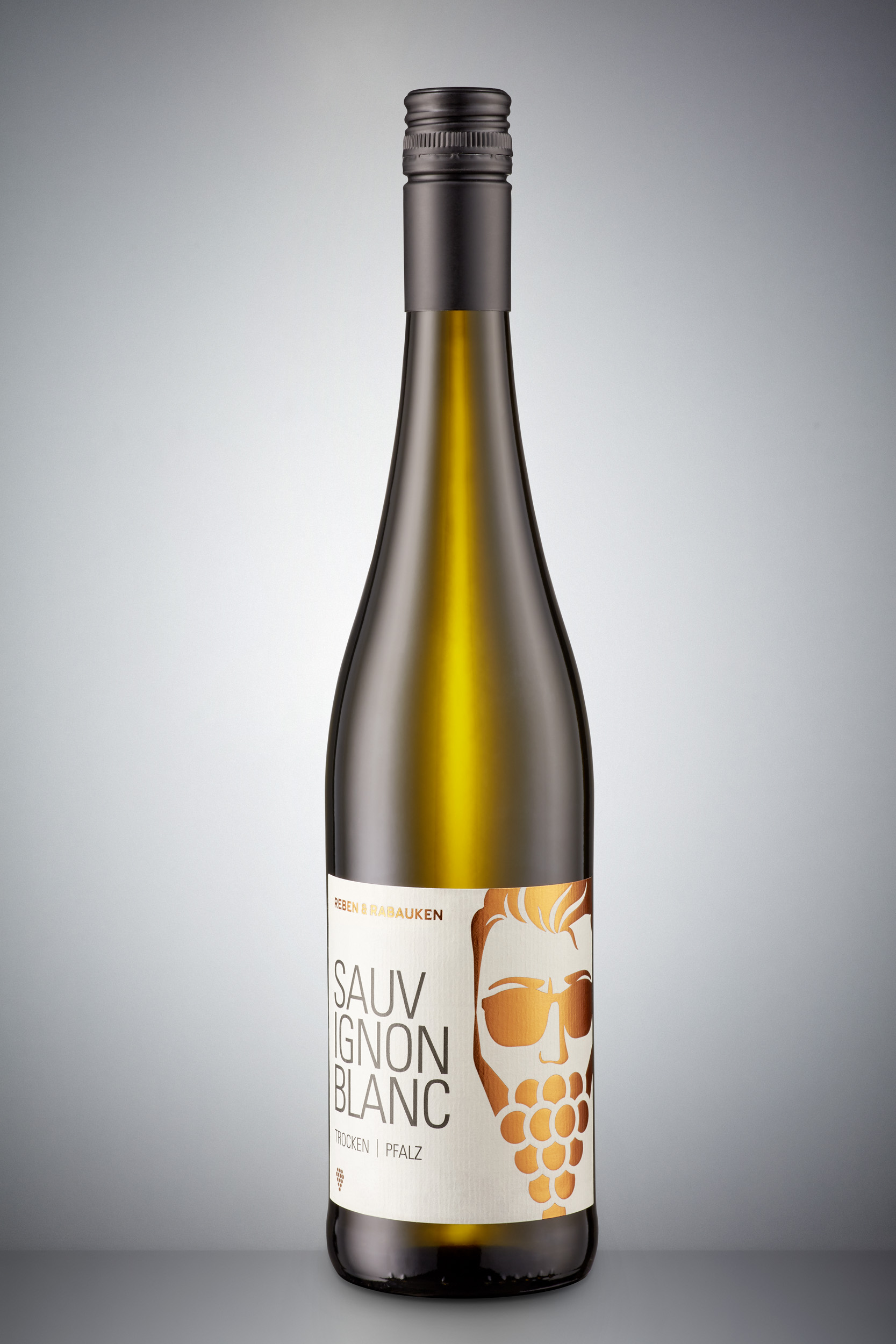 Sauvignon Blanc Pfalz BIO | trocken